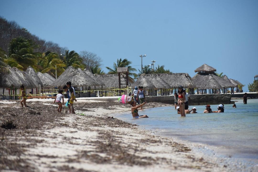 Erosión marina arrasa con 40 metros de playa al año en Campeche