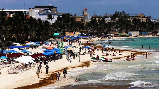 Registran en fotos y videos llegada de sargazo a Quintana Roo