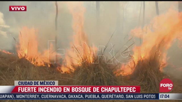 se registra incendio en la tercera seccion del bosque de chapultepec