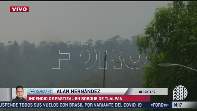 sofocan incendio forestal en el bosque de tlalpan