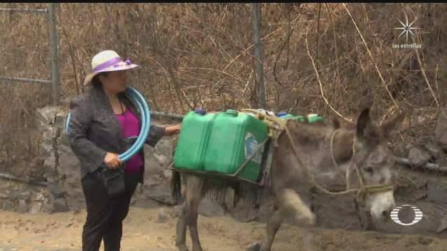 burritos auxilian a habitantes de xochimilco a acarrear agua