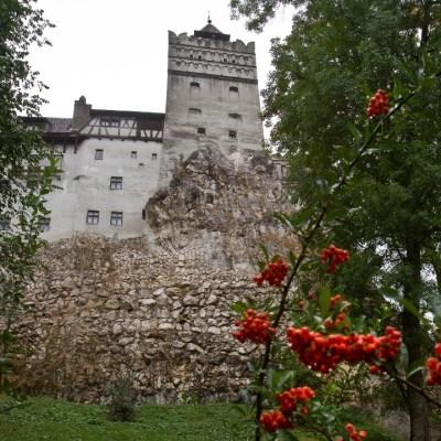Castillo de Drácula se transforma en centro-de-vacunación