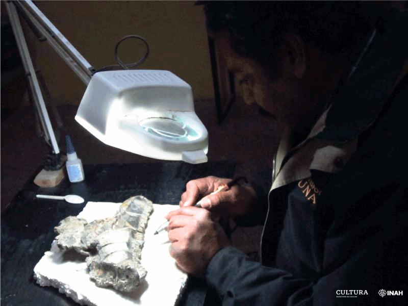 paleantologos