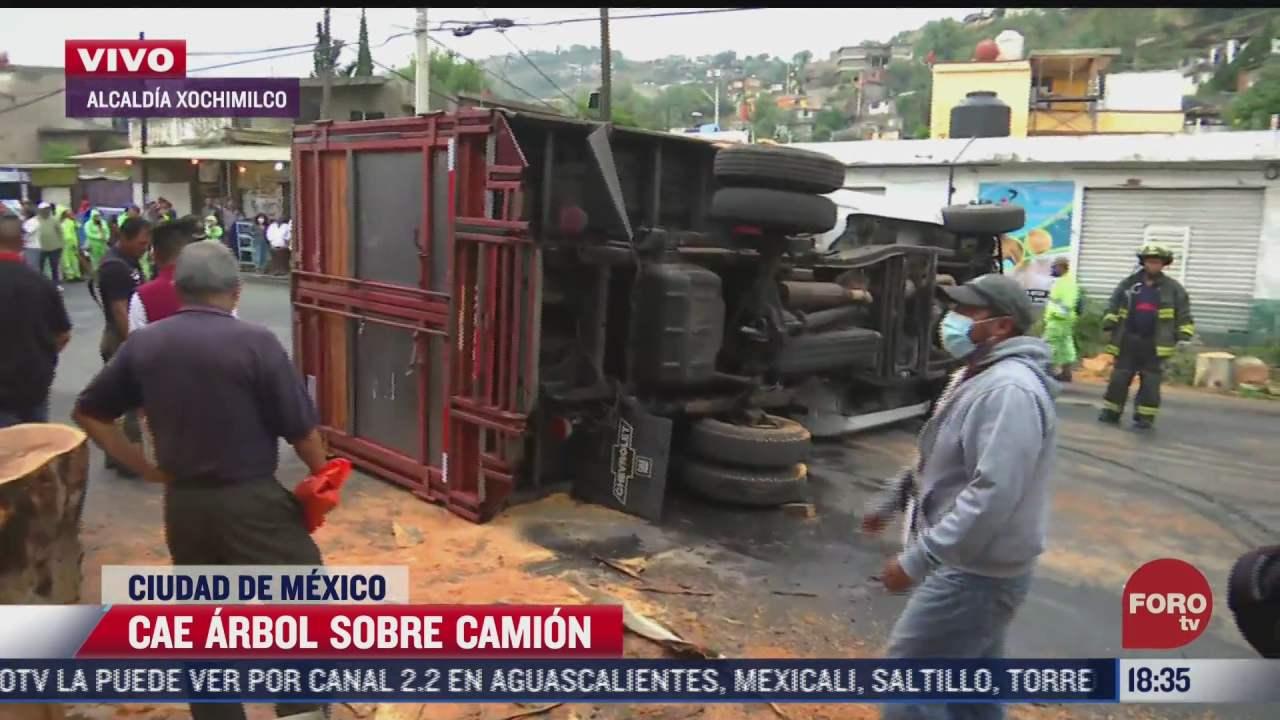 cae arbol sobre camion en xochimilco cdmx