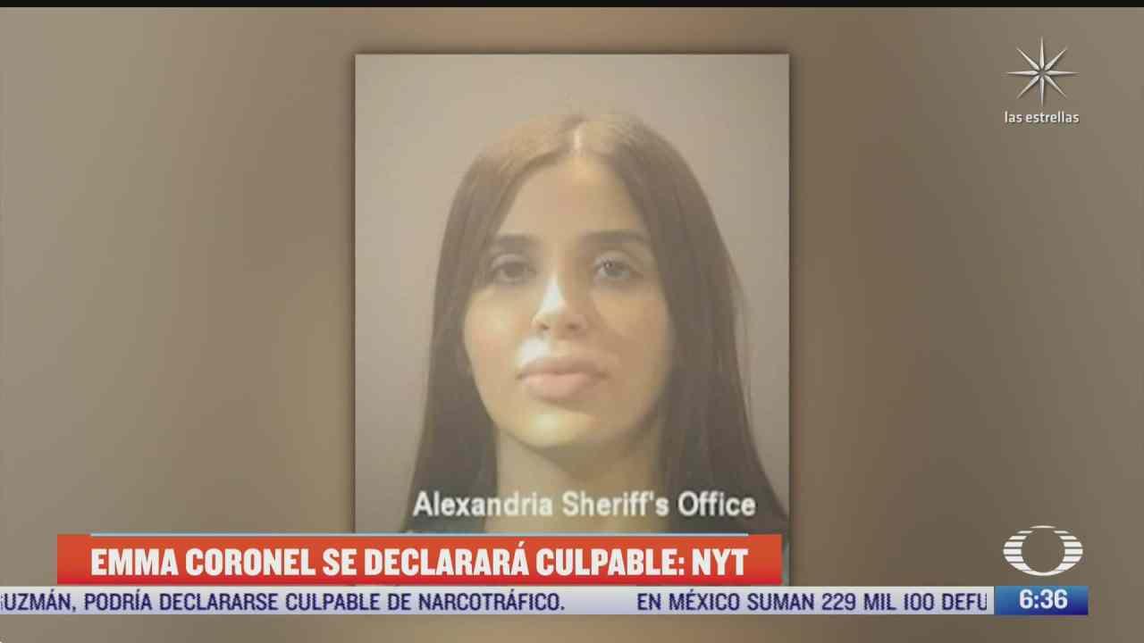 emma coronel podria declararse culpable de narcotrafico segun diario