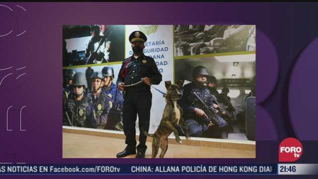 policia adopta a perrito abandonado en cdmx
