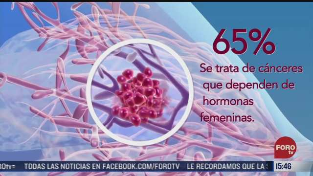 terapia endocrina evitaria que el cancer de mama regrese