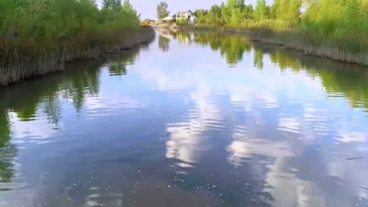 Agua del Río Colorado se mezcla con Mar de Cortés para restaurar ecosistemas en hecho histórico