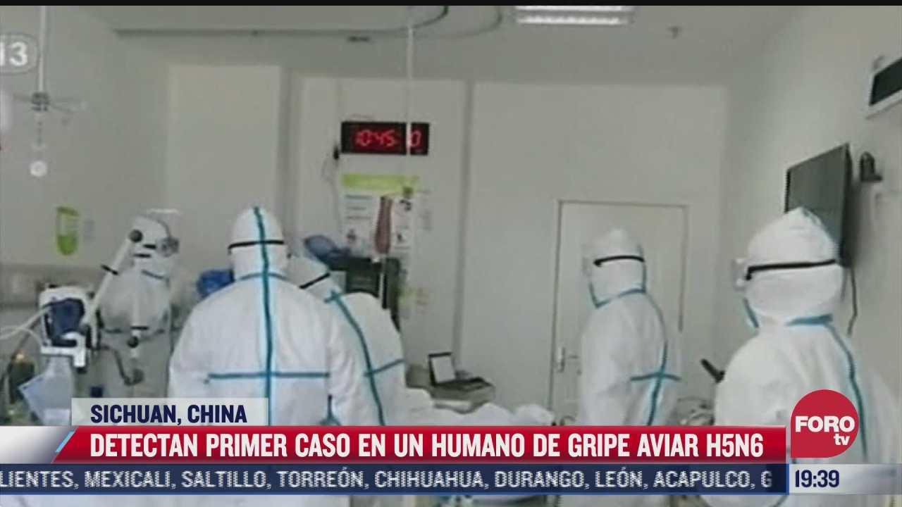 china detecta primer caso de humano contagiado de cepa h5n