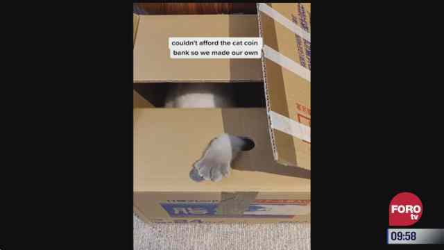 Una peculiar alcancía de gatito