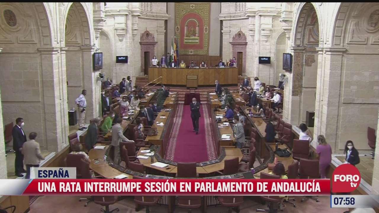rata interrumpe sesion en parlamento de andalucia