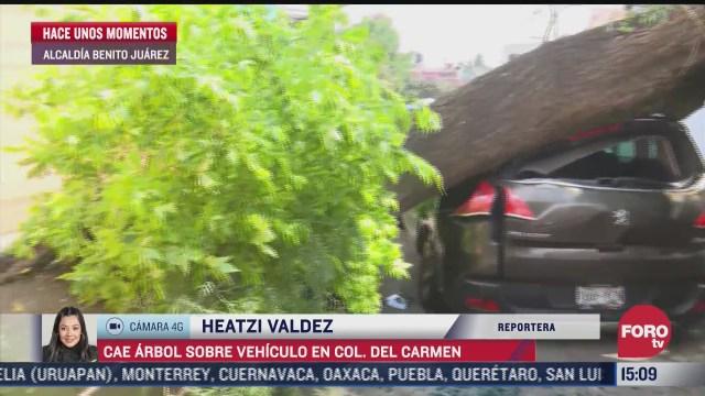 Cae árbol sobre vehículo en alcaldía Benito Juárez