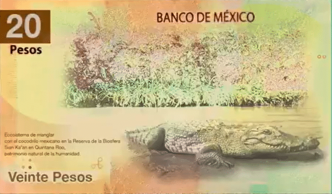 Diseño no oficial de nuevo billete de 20 pesos
