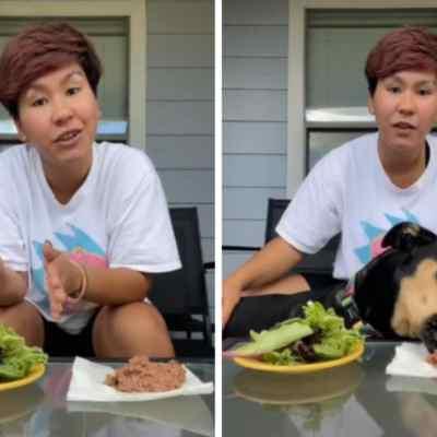 Presume en TikTok que su perro es vegetariano: Video