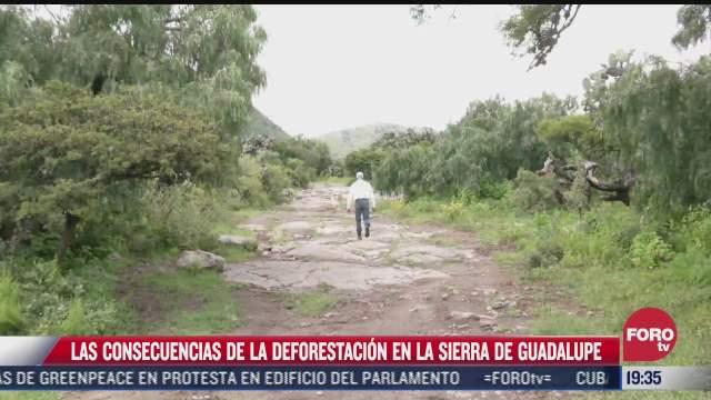 perdida de superficie forestal de la sierra de guadalupe causa severas inundaciones