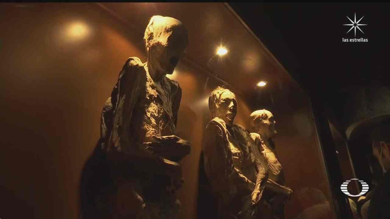 polemica por posible nuevo museo para las momias de guanajuato
