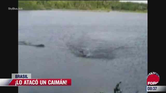 video ataque de caiman a hombre que nadaba en un lago