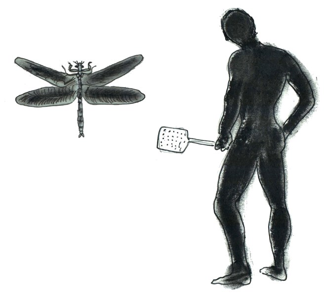 person with giant extinct dragonfly
