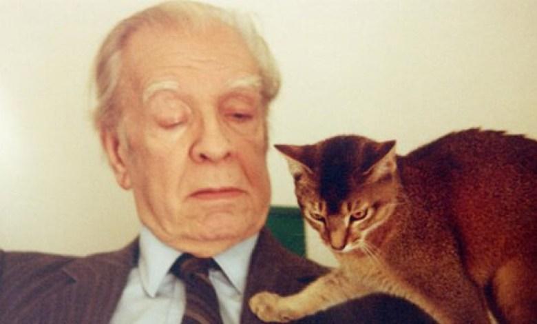 Photo of Suecia reveló porque nunca le dieron el Nobel a Jorge Luis Borges