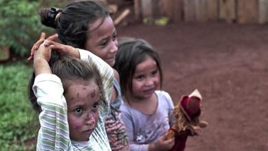 Photo of Un Sueño Para Misiones: Yerba Mate sin trabajo infantil
