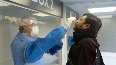 Photo of Investigadores del Conicet probarán spray nasal que podría detener al coronavirus