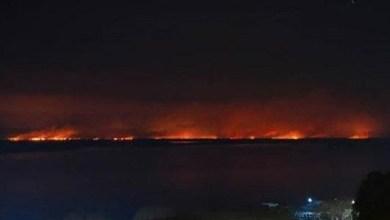 """Photo of Desesperante testimonio de un fotógrafo de National Geographic por los incendios en el litoral: """"Me culpo por dejarle a mi hija un planeta devastado"""""""