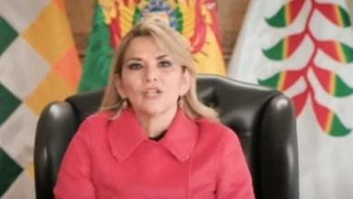 """Photo of La presidenta de facto de Bolivia denunció ante la ONU: """"el acoso sistemático y abusivo del gobierno kirchnerista"""""""