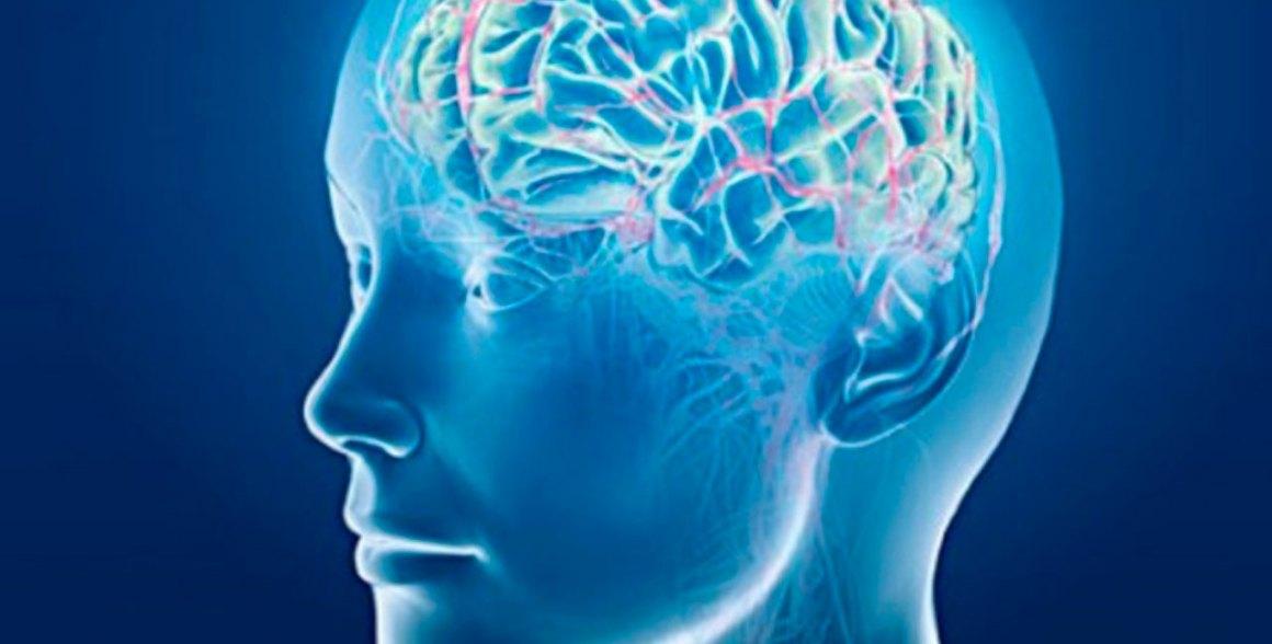 Cerebros 'desorganizados' por madres cocainómanas