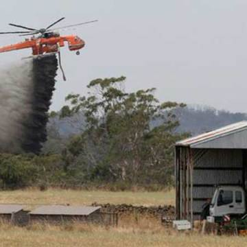 Incendios calcinan más de 100 casas en Australia