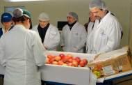 Ley alimentaria de EUA no afectará exportaciones mexicanas