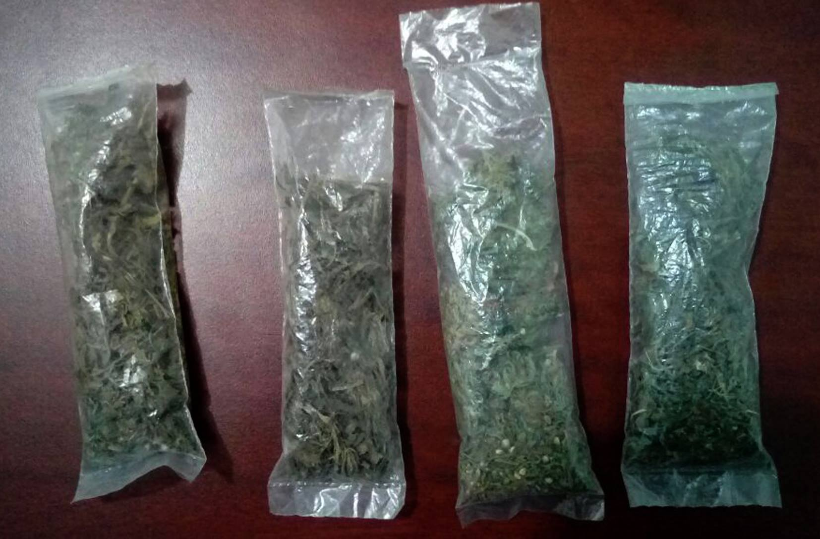 SSyPC detiene por robo a cuatro personas, traían arma de fuego y droga
