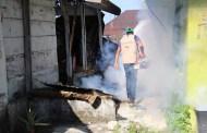 SS trabaja durante todo el año en el combate de dengue, chikungunya y zika