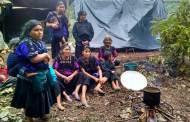 Atención integral a familias desplazadas en Chiapas