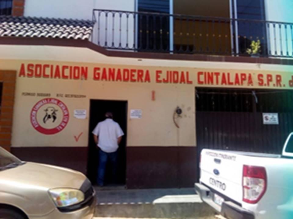 Capacitación y recuperación de semovientes benefician al sector ganadero de Chiapas