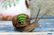 ¿Internet lento? Descubre las 5 causas más comunes