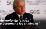 'Ofensa a víctimas indirectas de delincuencia plantear amnistía': Martí