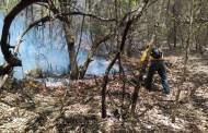 (Audio) Se activa alerta roja en Chiapas ante el intenso calor