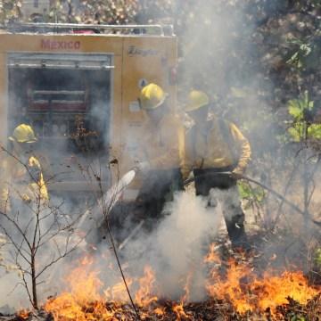 Todo lo que tienes que saber sobre la atención de un incendios forestal
