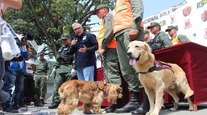 Con la ayuda de los caninos fue encontrada la droga.