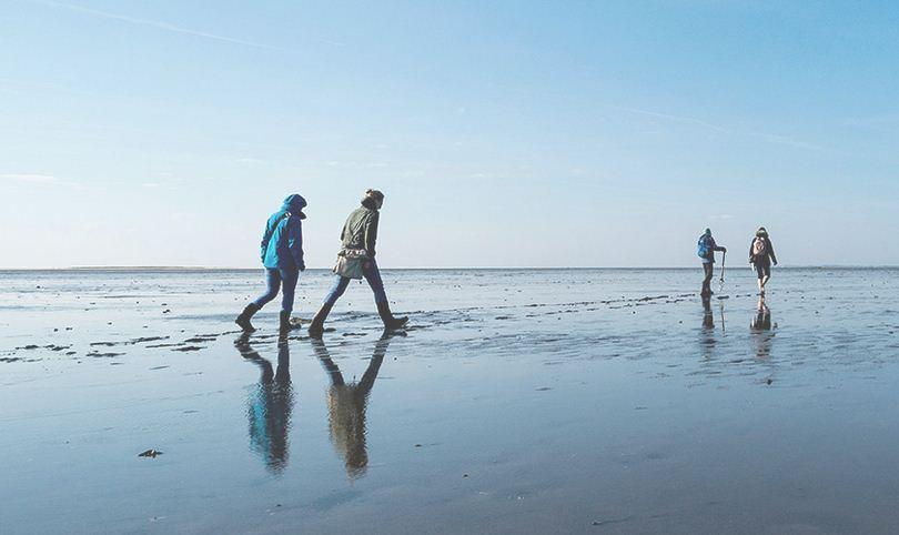 Caminar tranquilamente en el fondo del mar Frisias.