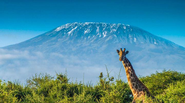 Kilimamjaro, Africa