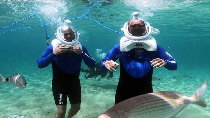 Excitante aventura submarina con guias profesionales.