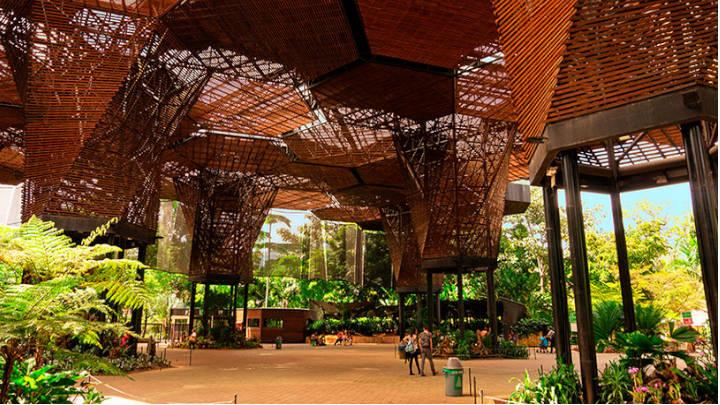 El Jardin Botanico, donde destacan la exhibición de orquídeas
