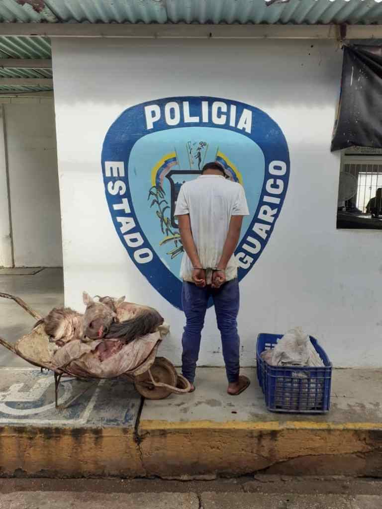 Fue capturado cargando carne de caballo en La Pascua.