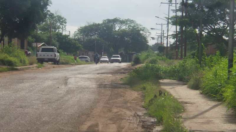 Esta avenida conecta varios sectores y en toda la extensión esta dañada.