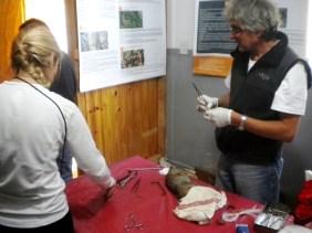 Mariana Desimone y Gustavo Lopez, durante la operación