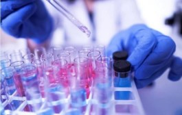 SaludLD l Desarrollan un virus que mata el cáncer de colon activando el sistema inmunológico