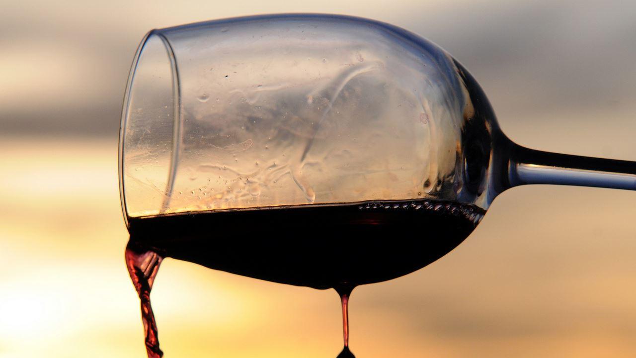 Un consumo saltuario di vino aiuta a equilibrare il microbioma dell'intestino