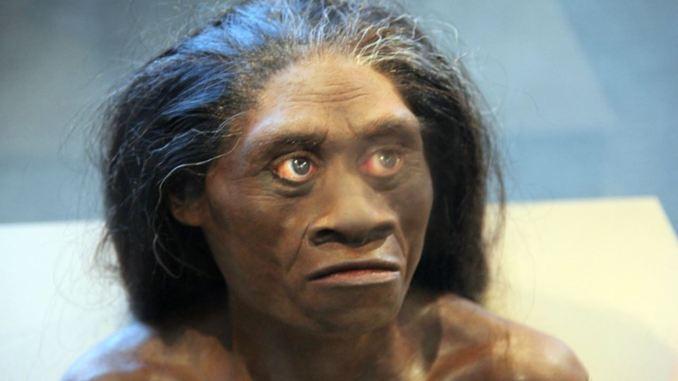 Scoperte tracce di antenato sconosciuto nel nostro DNA