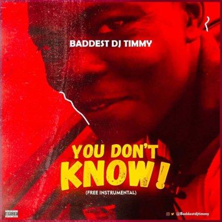 Baddest DJ Timmy - You Don't Know (Free Instrumental)